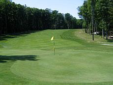 36++ Chestnut valley golf michigan ideas